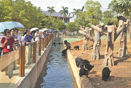 游客参观雄森动物大世界.