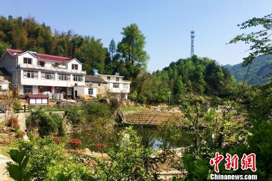 安徽金寨大湾村:多措并举绘制美好生活